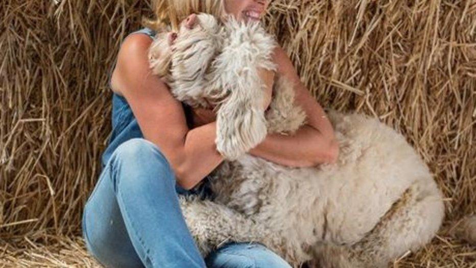 Hond van Yvon Jaspers bijna net zo populair als boer Tom