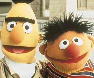 Sesamstraat-schrijver Saltzman ziet Bert en Ernie als stel