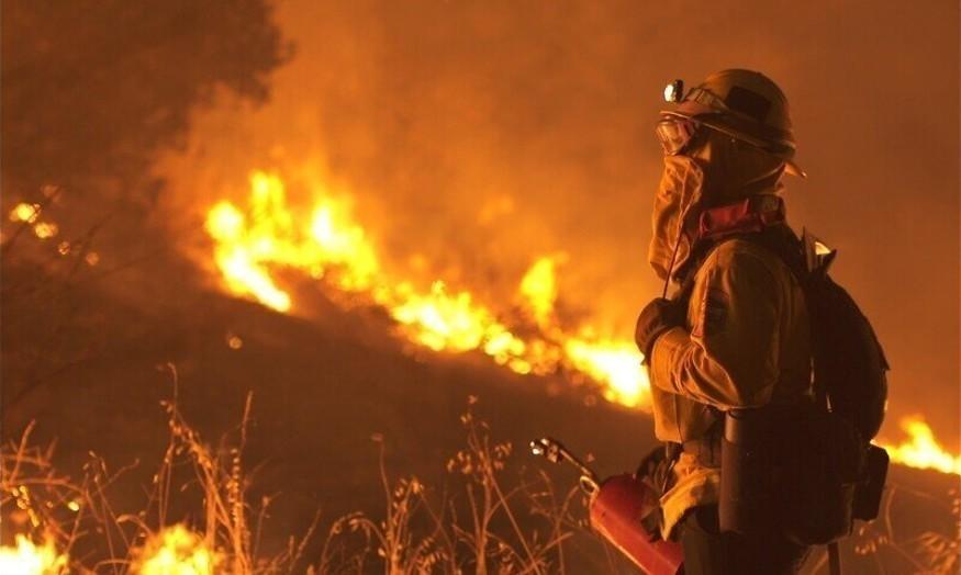 Verwoestende bosbranden