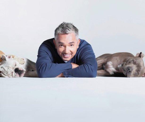 Cesar Milllan niet vervolgd voor dierenmishandeling