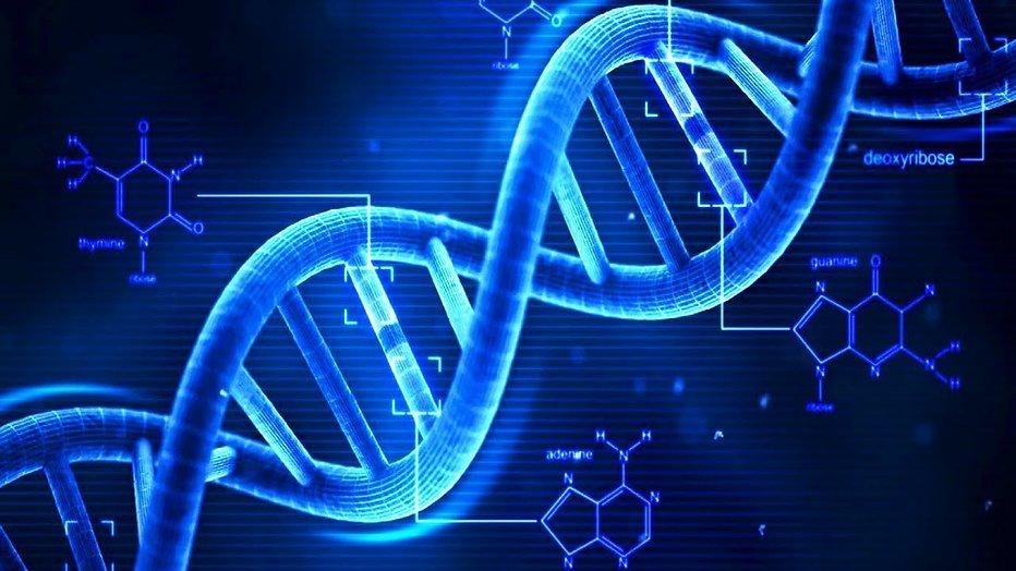 AVROTROS onderzoekt DNA van bekende Nederlanders