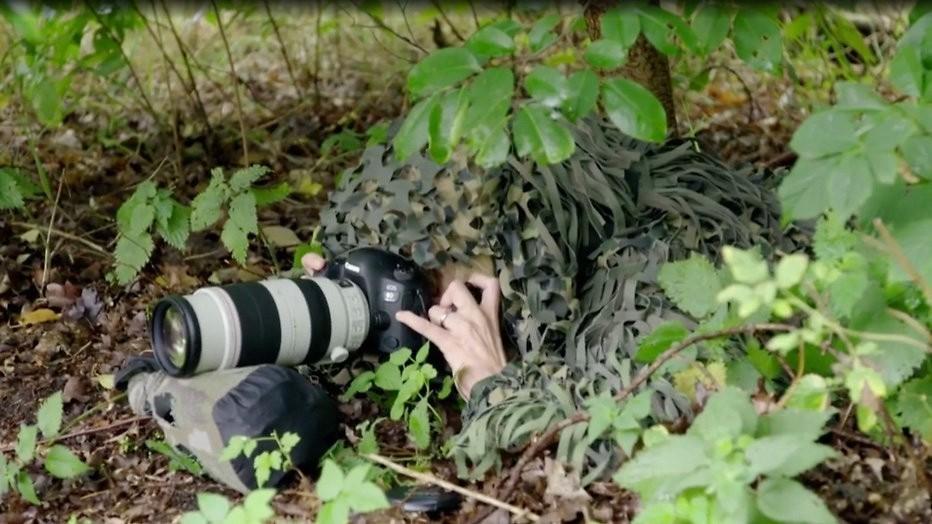 Verkleed als struik in de bosjes