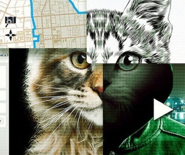 Van de documentaire Don't F**k With Cats op Netflix valt je mond open