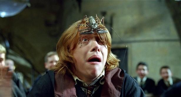 Daniel Radcliffe en de vuurbeker