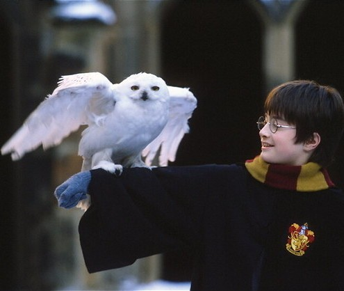 Harry Potter & The Sorcerer's Stone: Toen Harry een Pottertje was