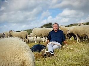Van Leeuwen en de schapen