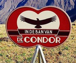 Kijkcijfers: In de Ban Van de Condor is geen hit