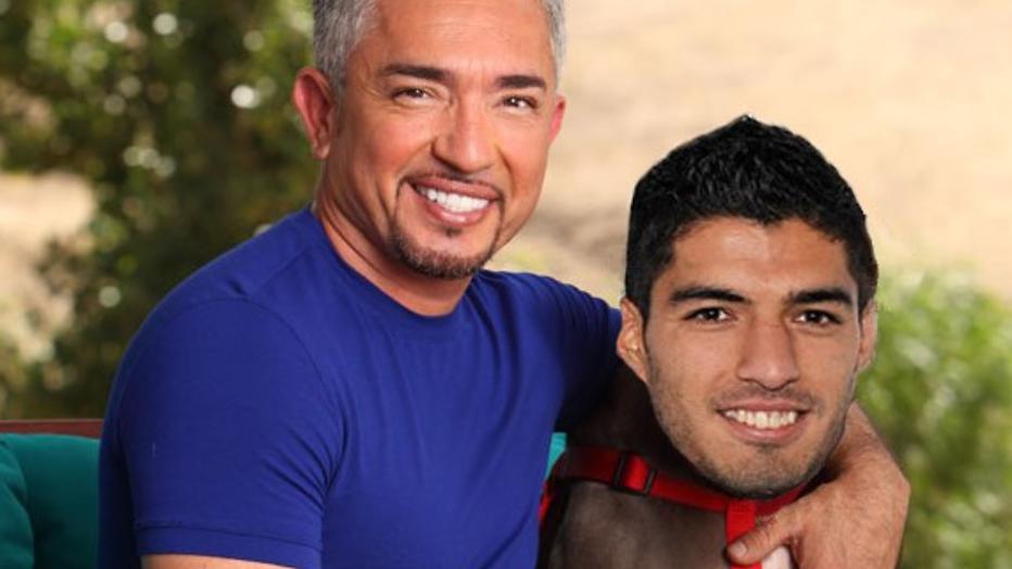 Suárez bijt van zich af: de leukste grappen