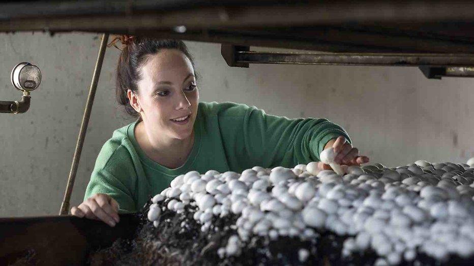Drugsafval gevonden op boerderij Michelle van Boer Zoekt Vrouw