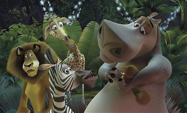 Van de dierentuin naar Madagaskar