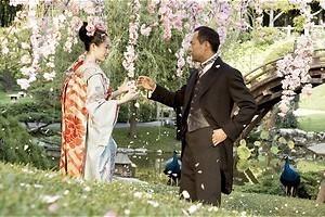 Het leven van de geisha's