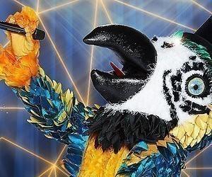 De TV van gisteren: The Masked Singer scoort weer