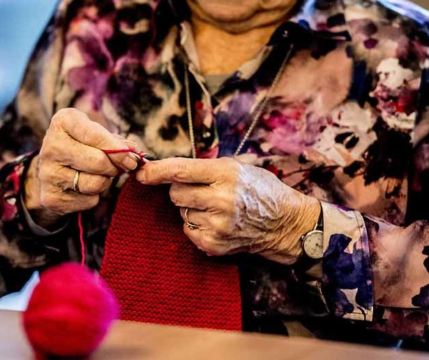 Oma's in de aanbieding bij SBS