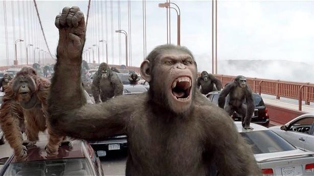 De hyperintelligente apen van James Franco