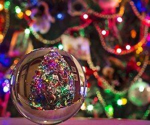 Sylvie versiert alweer kerstboom op naaldhakken