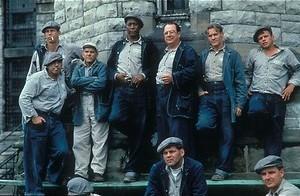 Onschuldig in de cel van Shawshank