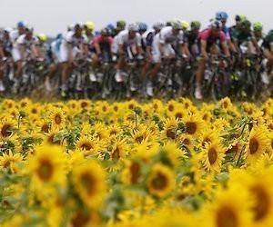 Sprintetappe naar Nancy in Tour de France