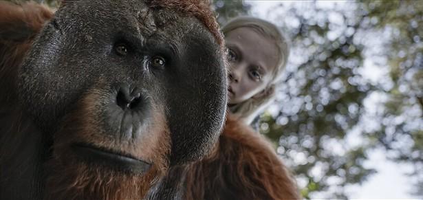 Woody Harrelson knokt met apen