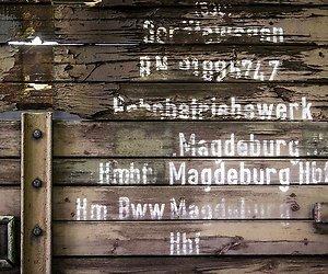 Herdenking bevrijding kamp Westerbork op televisie